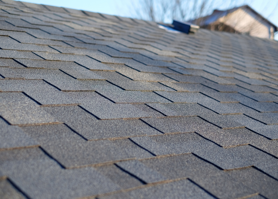 roof shingles during a roof inspection